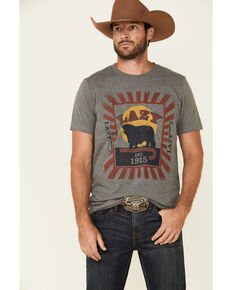LJ Ranch Wear Men's Grey Sunrise Feed Graphic T-Shirt , Light Grey, hi-res