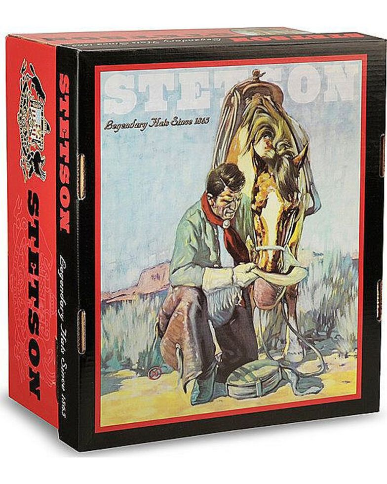 Stetson Men's Skyline 6X Fur Felt Cowboy Hat, Sahara, hi-res